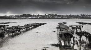 Granja de la ostra en marea baja en Britanny, Lilia, Francia en un tempestuoso Imagen de archivo