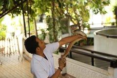 Granja de la serpiente Fotografía de archivo libre de regalías