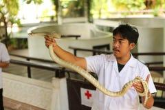 Granja de la serpiente Foto de archivo libre de regalías