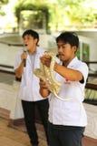 Granja de la serpiente Imágenes de archivo libres de regalías