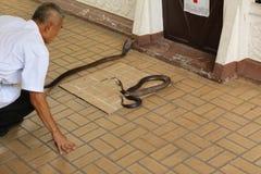 Granja de la serpiente Foto de archivo