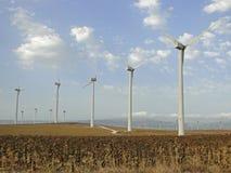 Granja de las turbinas de viento con el campo del girasol Imagenes de archivo