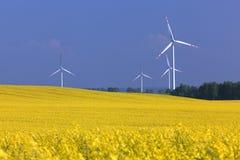 Granja de las turbinas de viento en el campo de la violación. Fotografía de archivo