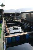 Granja de pescados en el mar Fotos de archivo libres de regalías