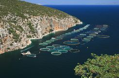 Granja de pescados, Grecia Fotos de archivo libres de regalías