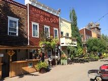 Granja de Saskatoon Imagen de archivo libre de regalías