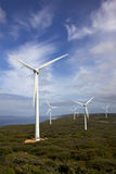 Granja de viento de Albany Foto de archivo