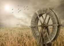 Granja de Watermill y del trigo Imagenes de archivo