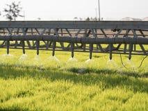 Granja del arroz con la máquina Fotografía de archivo libre de regalías