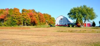 Granja del campo de la soja Foto de archivo