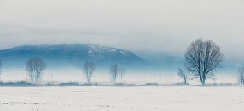Granja del invierno imagen de archivo