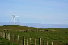 Granja del molino de viento Imagen de archivo