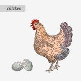 Granja del pollo y del huevo Fotos de archivo