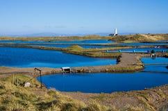 Granja del sur de la ostra de Walney Foto de archivo