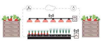 Granja elegante y agricultura Supervisión y control de la temperatura, humedad, nivel de luminosidad Cultivación de plantas Nueva stock de ilustración