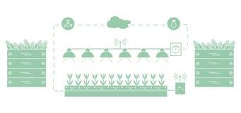Granja elegante y agricultura Supervisión y control de la temperatura, humedad, nivel de luminosidad Cultivación de plantas Nueva ilustración del vector