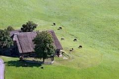 Granja en el alto Adige Imagenes de archivo