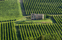 Granja en Italia Fotografía de archivo