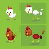 Granja Hen Rooster Vector Illustration Ilustración del Vector