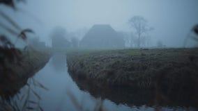 Granja holandesa de niebla en un paisaje verde y mojado del prado en el invierno Con la caña en el primero plano almacen de video