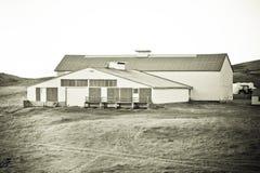 Granja islandesa Foto de archivo