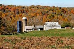 Granja lechera en Ohio meridional Imagen de archivo libre de regalías