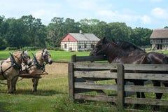 Granja lechera vieja de Wisconsina de los caballos Fotos de archivo libres de regalías
