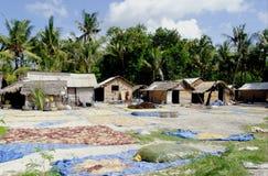 Granja lembongan de la alga marina de Nusa Fotos de archivo libres de regalías