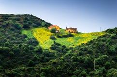 Granja rural sobre una colina con un prado y flores amarillas Imagen de archivo libre de regalías