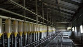 Granja vacía industrial moderna para criar los cerdos, fertilización automatizada tecnología moderna de la inseminación del sitio almacen de metraje de vídeo