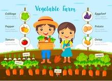 Granja vegetal infographic Imagen de archivo