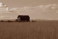 Granja vieja en una pradera Fotografía de archivo