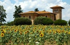 Granja y girasoles de Toscana Foto de archivo libre de regalías