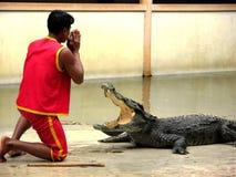 Granja y parque zoológico 4 del cocodrilo de Samutprakan Fotografía de archivo
