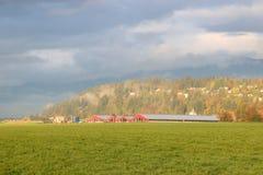 Granja y prado norteamericanos productivos foto de archivo