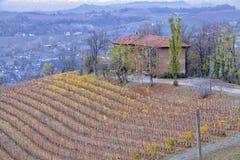 Granja y viñedos de Langhe Imagen del color Foto de archivo