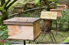 Granjas de la abeja situadas en Cameron Highlands Imagen de archivo