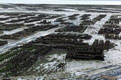 Granjas de la ostra en Francia imagenes de archivo