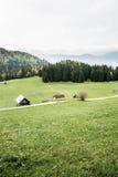 Granjas lecheras idílicas en prado alpino fotografía de archivo libre de regalías