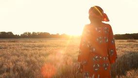 Granjero africano de la mujer en la ropa tradicional que se coloca en un campo de cosechas en la puesta del sol o la salida del s almacen de metraje de vídeo