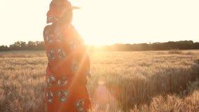 Granjero africano de la mujer en la ropa tradicional que se coloca en un campo de cosechas en la puesta del sol o la salida del s almacen de video