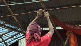 Granjero, animales, Camboya almacen de metraje de vídeo
