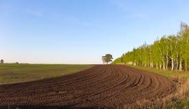 Granjero arable del campo Imagen de archivo