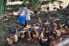 Granjero con el cubo en granja avícola Imagenes de archivo