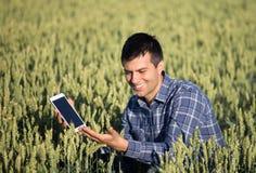 Granjero con la tableta en campo de trigo verde Imagenes de archivo