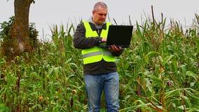 Granjero con PC en el campo de maíz