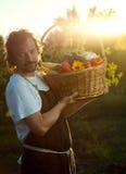 Granjero con una cosecha ecológica de verduras en una cesta cerca Foto de archivo