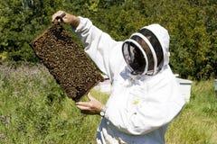 Granjero de la miel Fotos de archivo libres de regalías