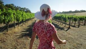 Granjero de la mujer del viñedo almacen de video