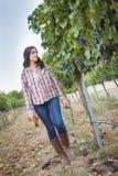 Granjero de sexo femenino joven Inspecting las uvas en viñedo Fotos de archivo